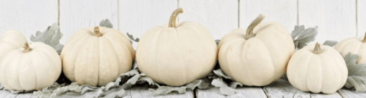 Pumpkins are a great way to decorate for a Fall wedding!